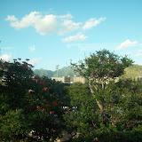 Hawaii Day 3 - 114_1146.JPG