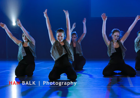 Han Balk Voorster Dansdag 2016-3704.jpg