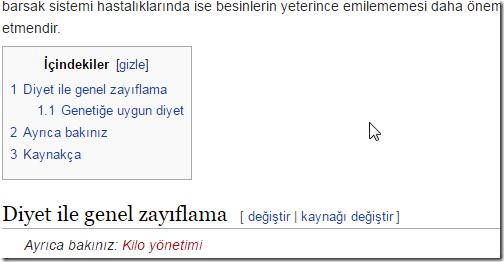 Wikipedia-anahtar-kelime