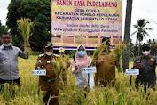 Panen Padi di Pamelo Kepulauan, Bupati Gorut Indra Minta Pengembangan 3 Varietas Padi Lokal