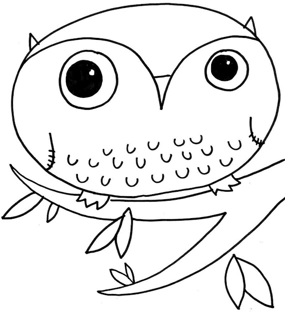 Owl Coloring Pages Animal