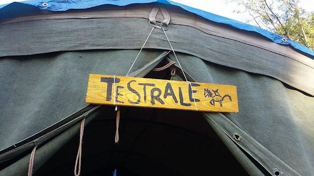 Obóz harcerski w Woli Michowej - 14218526_1769534873265177_1073638109_n.jpg