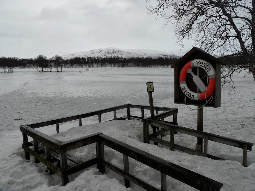 Norvège mars 2014 SAM_1526
