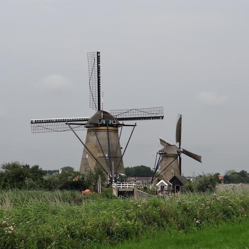 Day_6_Kinderdijk_47.JPG