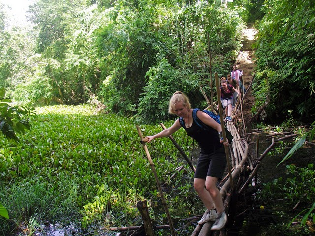 Crossing a bamboo bridge on the way to Hamham Waterfalls in Rajkandi Reserve Forest