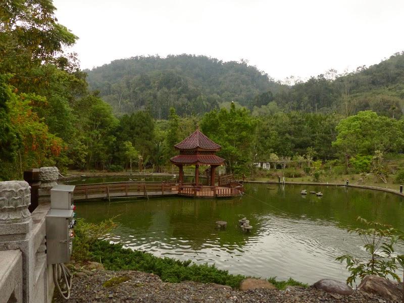 Puli, Nantou county, cueillette de thé - P1050651.JPG