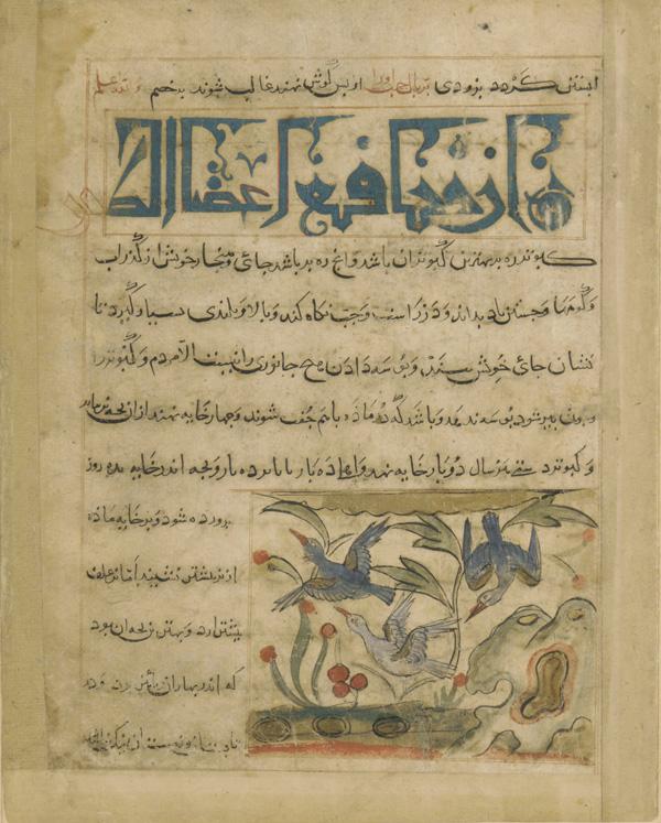 Smithsonian World Map Rug: Smithsonian Museum's Folio & Manuscript Collection