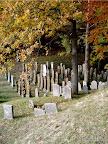 """Gemeinde Mühlhausen OPf. OT Sulzbürg, Jüdischer Friedhof, Konservierung der Grabmäler 2003/10 """"Objekterfassung, Konzeption, Fachbauleitung, Öffentlichkeitsarbeit"""""""