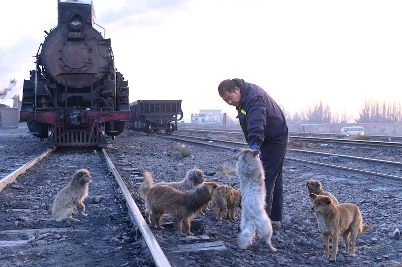 190103 三道嶺の犬たちと鉄道員