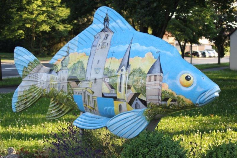 On Tour in Tirschenreuth: 30. Juni 2015 - Tirschenreuth%2B%25284%2529.jpg