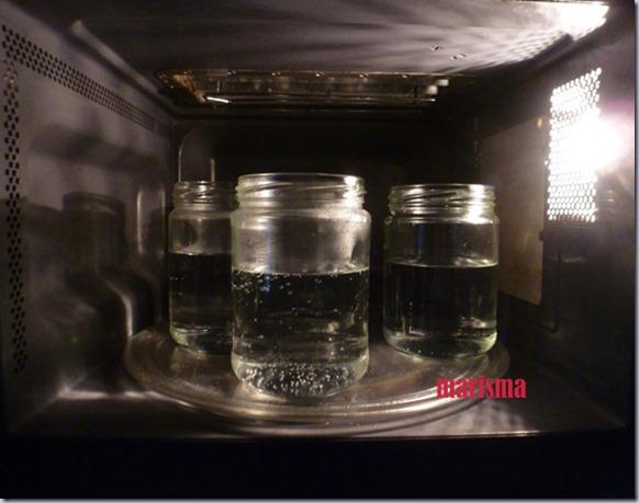 esterilización en micro1 copia