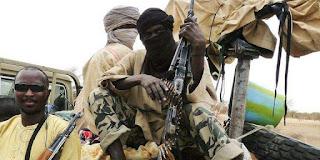 Mali: Un groupe de jihadistes armés s'empare d'un village.
