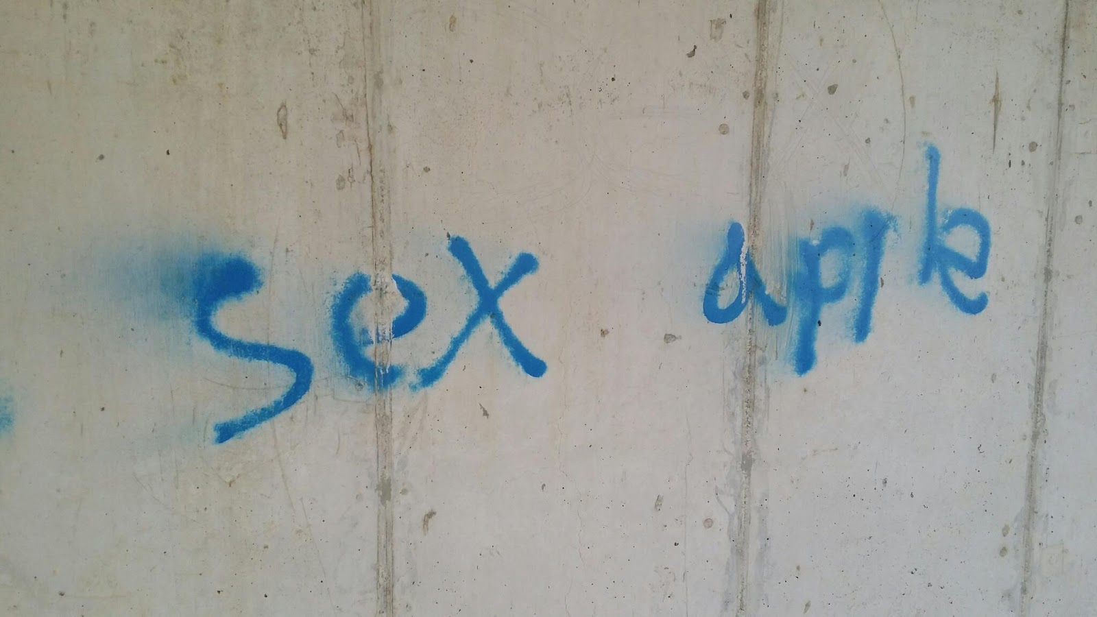 bighominid's hairy chasms: walk thoughts #181: graffiti under the bridge