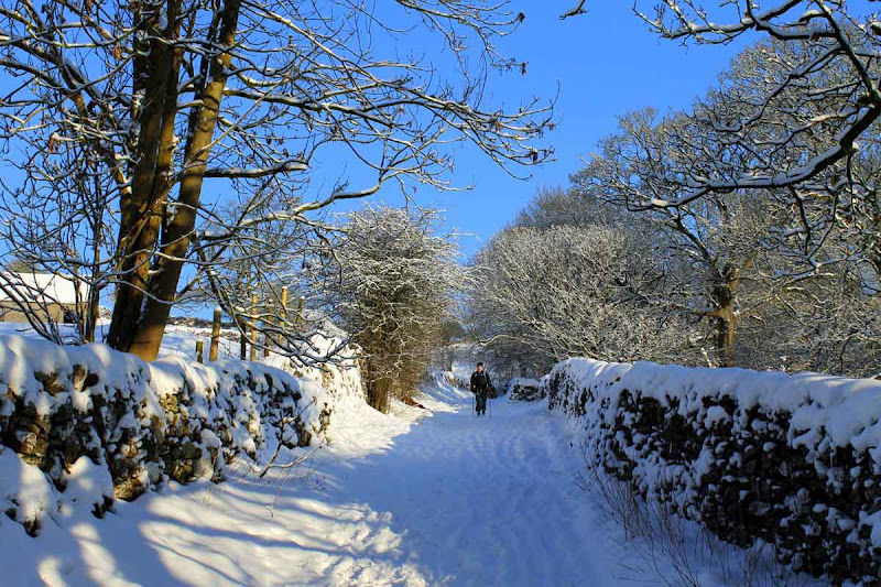 Winter-2013-h