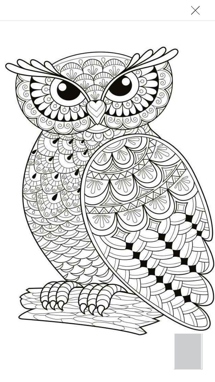 unique coloring pages owl cartoon - photo#8