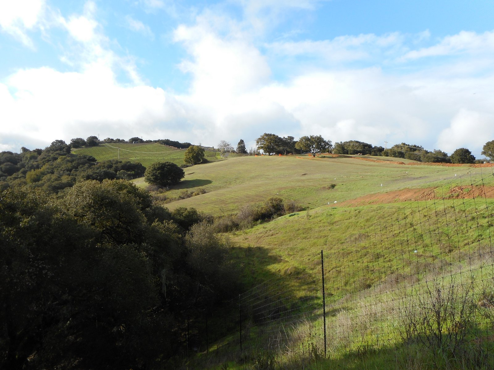 Worm's Hills of Los Gatos