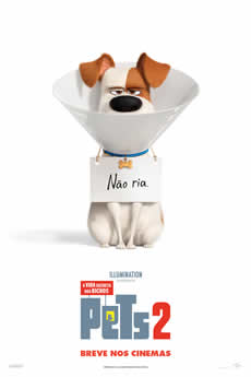 capa Pets: A Vida Secreta dos Bichos 2