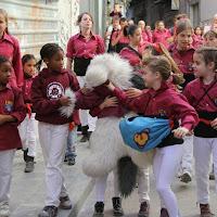 19è Aniversari Castellers de Lleida. Paeria . 5-04-14 - IMG_9378.JPG