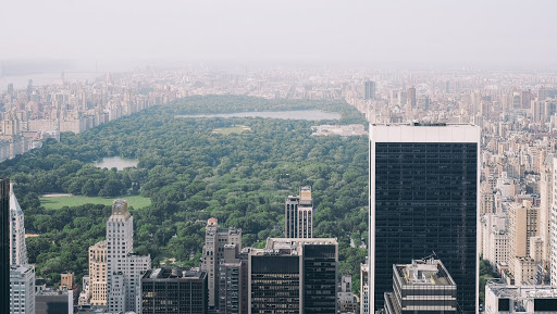 3 Unusual Things to do in Central Park