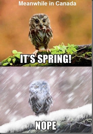 Spring-nope