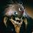Ima Grant avatar image