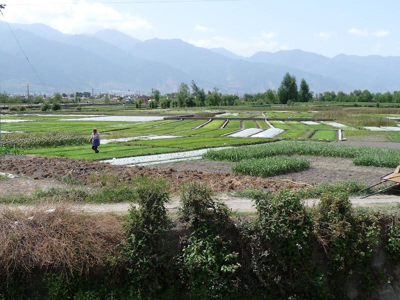 Chine. Yunnan Dali .En vélo vers le lac ERHAI - P1170740.JPG