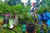 Dua Rumah Warga Gampong Panton Pange Kabupaten Nagan Raya Roboh Tertimpa Pohon