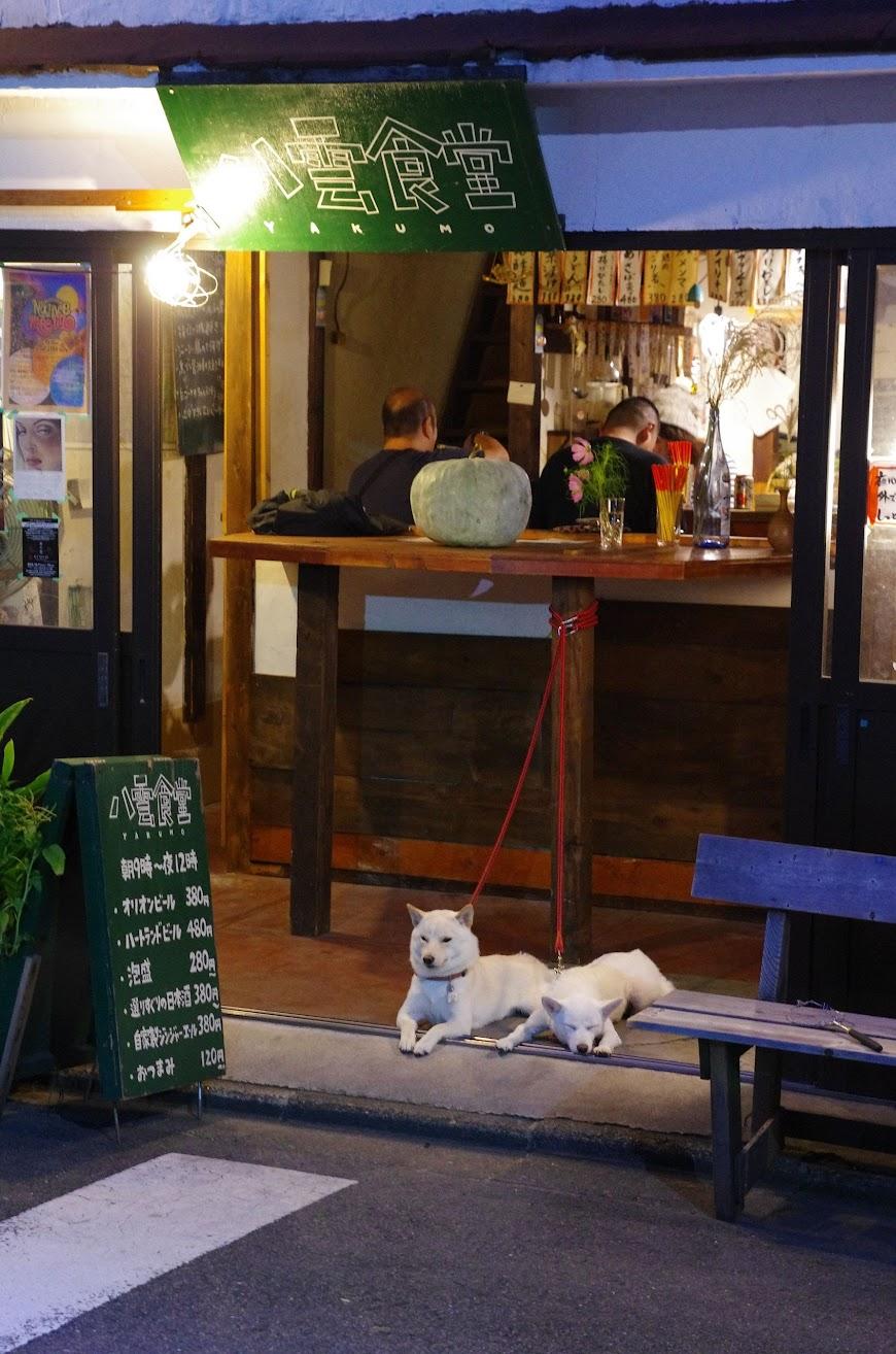 kyoto_2016_0122.JPG