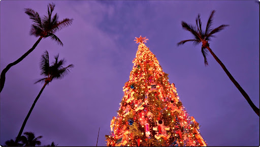 Christmas in Honolulu, Oahu, Hawaii.jpg