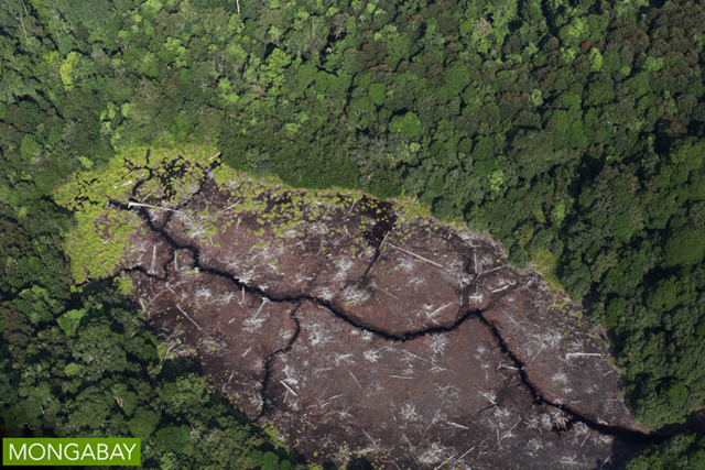 Aerial view of a dried out peat lake in Sumatra, Indonesia in 2015. Photo: mongabay.com