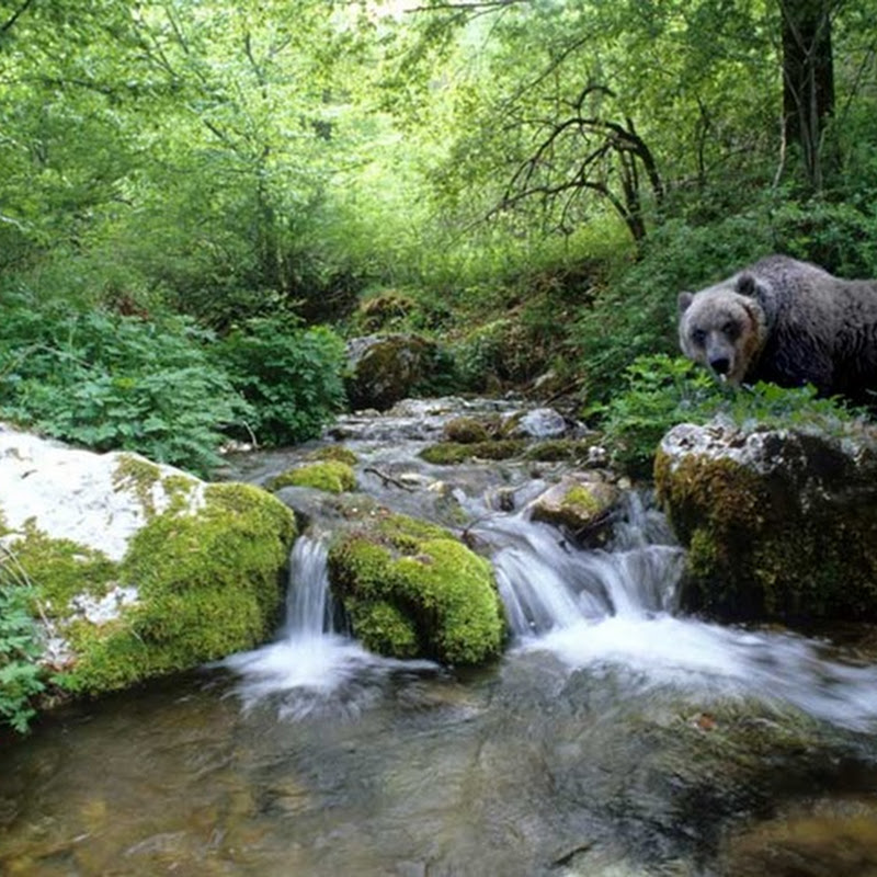 Il Parco Nazionale d'Abruzzo, Lazio e Molise è fatto anche di borghi e piccoli paesi.
