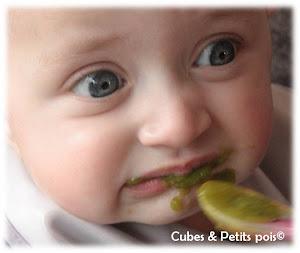neophobie-selectivite-alimentaire-chez-bebe