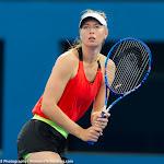 Maria Sharapova - 2016 Brisbane International -DSC_1742.jpg