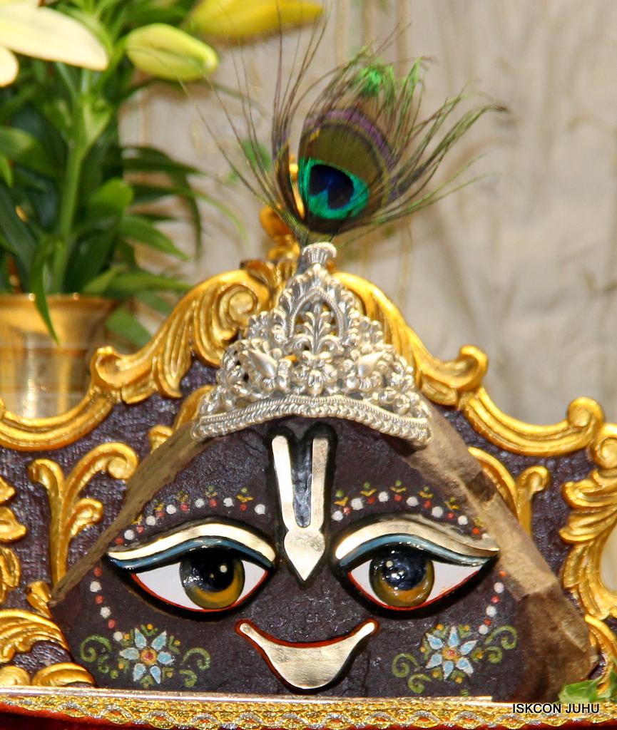 ISKCON Juhu Mangal Deity Darshan on 21st Oct 2016 (26)