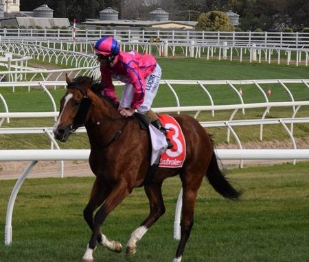 race 6_highland beat 3
