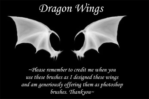 dragon wings photoshop brushes