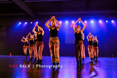 Han Balk Voorster Dansdag 2016-4059-2.jpg