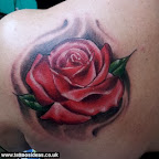 red rose - tattoos ideas