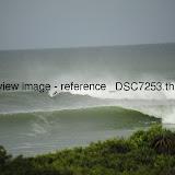 _DSC7253.thumb.jpg