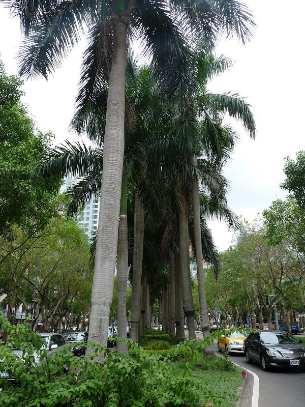 TAIWAN.Taipei - P1110341.JPG