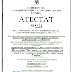 Атестат-9671.jpg
