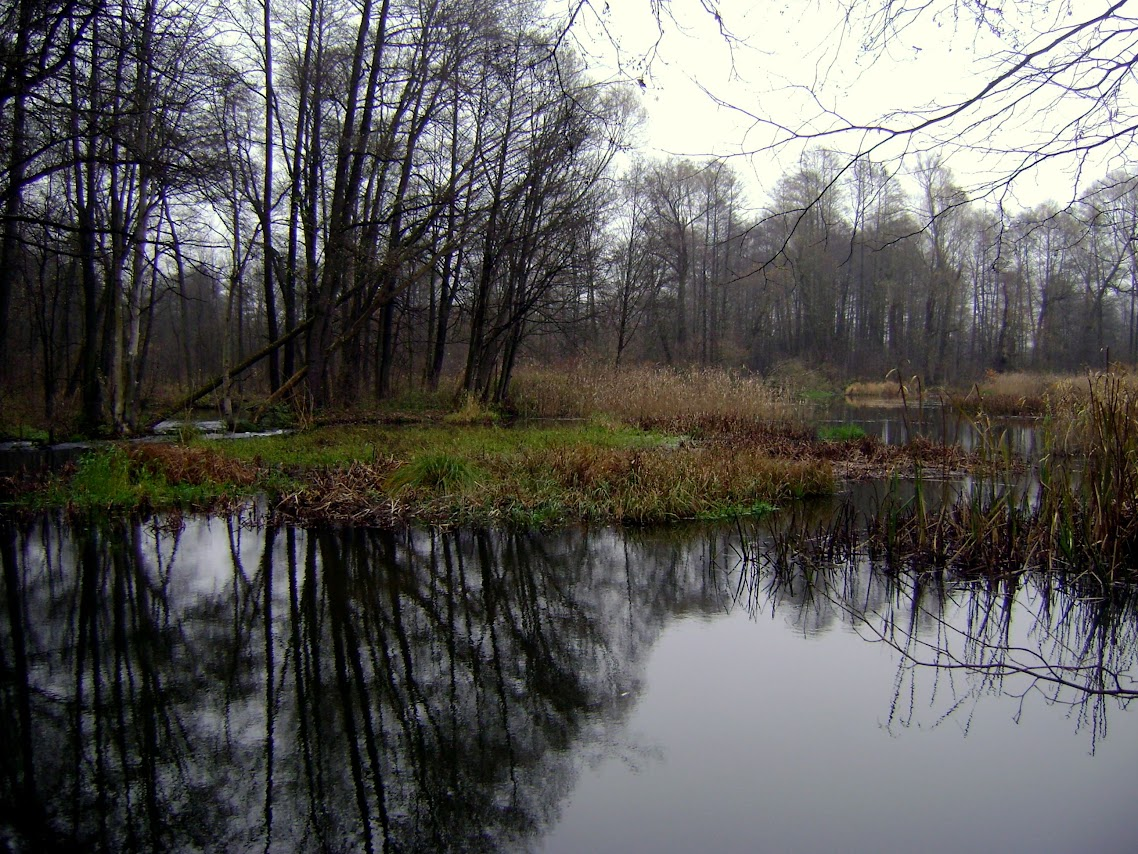 Talar-Ldzań