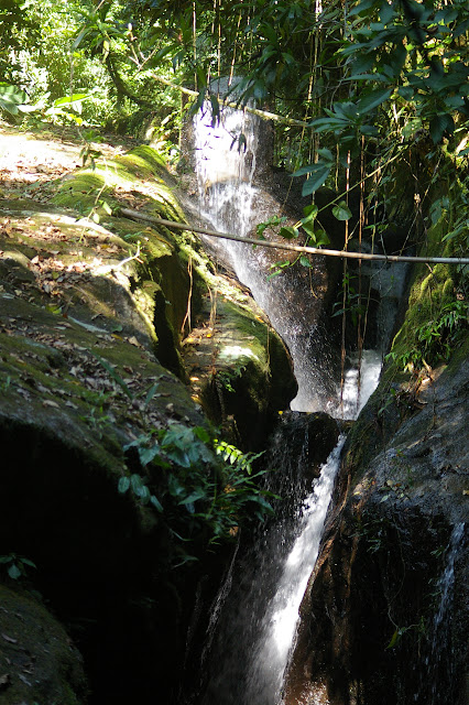 Cascade dans la Fazenda d'Arariba (Ubatuba, SP), 22 février 2011. Photo : J.-M. Gayman