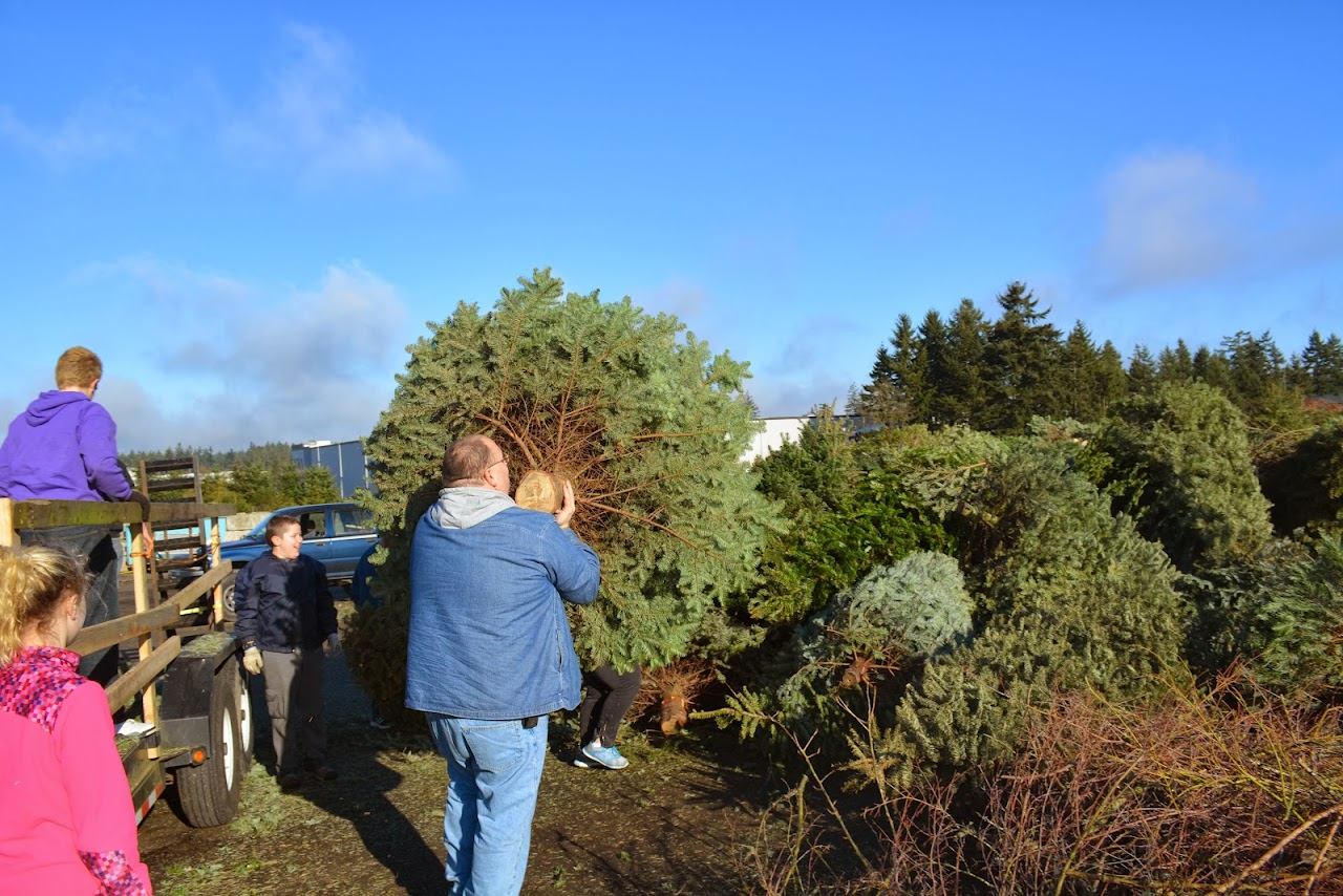 Christmas Tree Pickup 2014 - DSC_0082.jpg