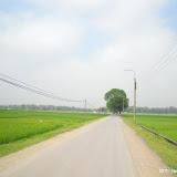 Đường Đền Và (08-05-2011)
