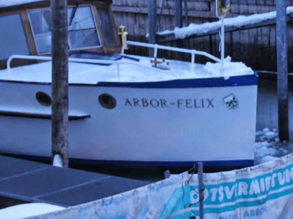 Neujahrsbegrüssung auf MS Arbor-Felix