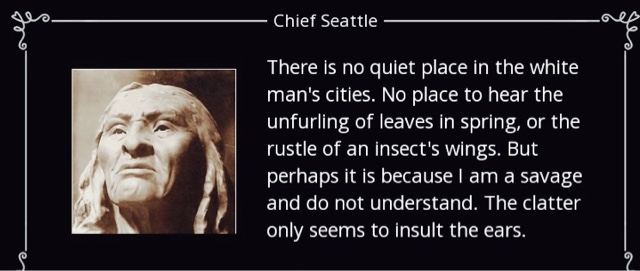 chief seattle oration analysis As i served my lds mission nearby and on many of the reservations that may have been part of the offer which chief seattle addresses in his speech, i thought it was more than appropriate for me to do some rhetorical analysis on his words.
