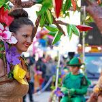 CarnavaldeNavalmoral2015_275.jpg