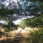 006-Nieuwjaarswandeling met de Bevers.Menno gidst ons door het mooie natuurgebied De Regte Heide te Go+»rle