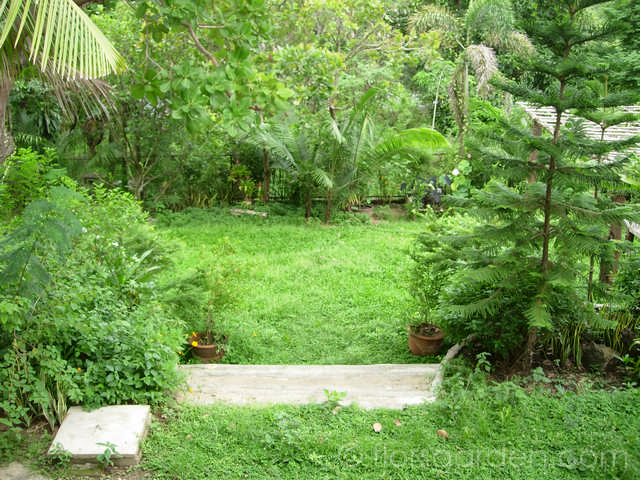 Amenities - mid-garden_03.jpg